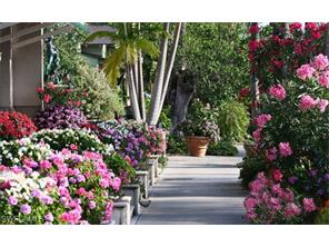 Naples Real Estate - MLS#217017903 Photo 22