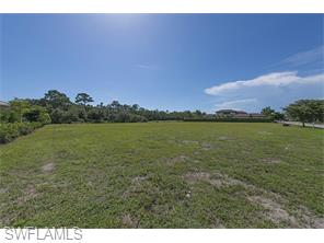 Naples Real Estate - MLS#215036906 Photo 6
