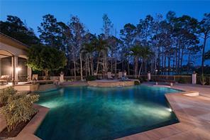 Naples Real Estate - MLS#217011026 Photo 23