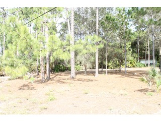 Naples Real Estate - MLS#213006335 Photo 0