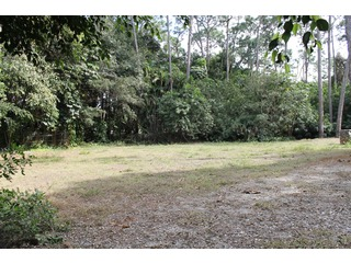 Naples Real Estate - MLS#213006335 Photo 2