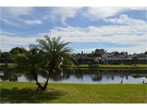 Naples Real Estate - MLS#217008837 Photo 1