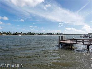 Naples Real Estate - MLS#216044340 Photo 9