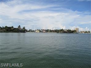 Naples Real Estate - MLS#216045641 Photo 4