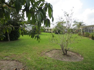 Naples Real Estate - MLS#213008249 Photo 3