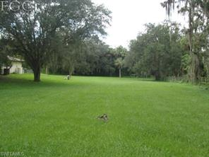 Naples Real Estate - MLS#217048358 Photo 4