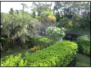 Naples Real Estate - MLS#217024976 Photo 2