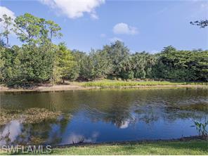 Naples Real Estate - MLS#216025782 Photo 12