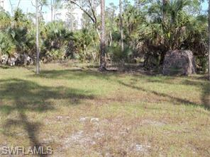 Naples Real Estate - MLS#215025983 Photo 6