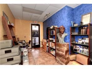 Naples Real Estate - MLS#217003284 Photo 10
