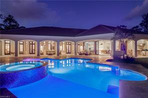 Naples Real Estate - MLS#217001589 Photo 2